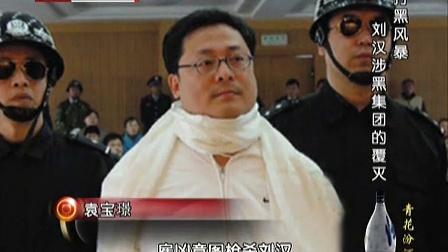档案 2014 打黑风暴 刘汉集团的覆灭