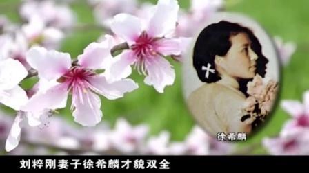 34《空中红武士》南京电视台《战鹰》系列微纪录片纪念中国人民抗日战争暨世界人民反法西斯战争胜利70周年