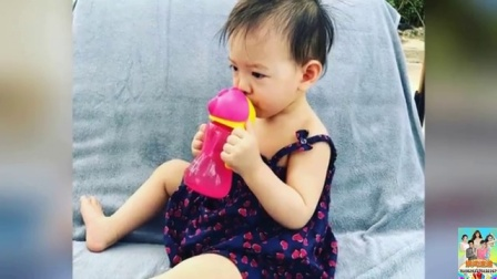 娱闻第一速递 2017 7月 张梓琳回家胖妹趴着来迎接 奶声奶气萌化了 170713
