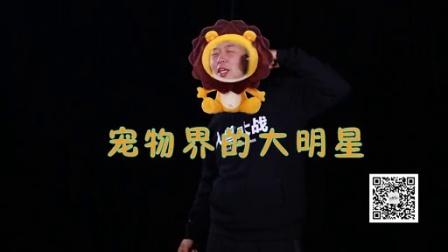 萌宠4B大会 杜海涛版召集令!!