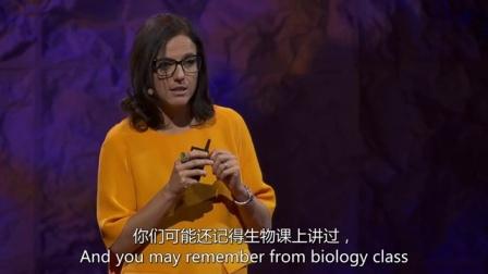 Jocelyne Bloch:大脑也许可以在辅助下进行自我修复