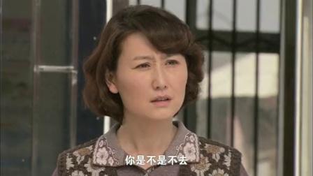 宝乐婶的烦心事 27 DVD版