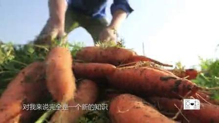 原味饕餮美食版宣传片