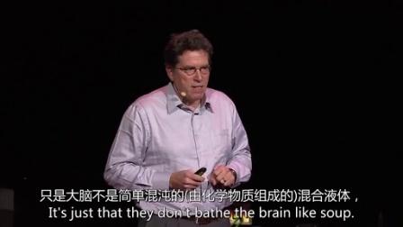 戴维·安德森:你的大脑优于化学品仓库
