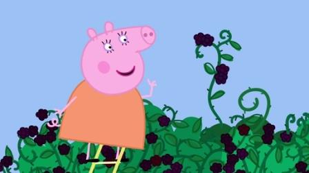 小猪佩奇 第四季:黑莓灌木丛