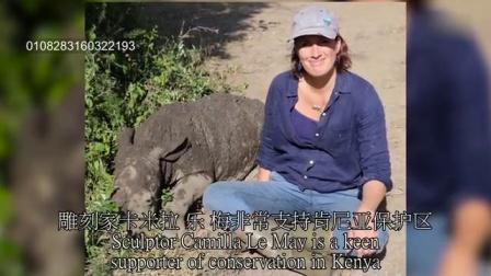 1114 被救助的犀牛明星林戈 喜欢做女神