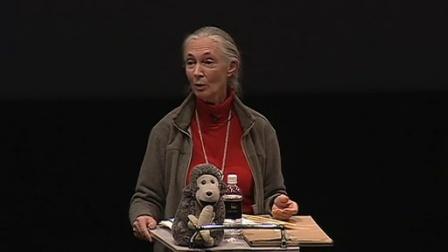 珍妮·古道尔:论人和猿的区别