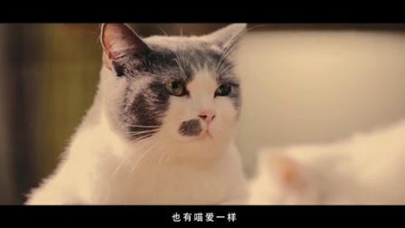 《喵星人抢不到》第二季03集:喵的第十次恋爱(萌娃版)