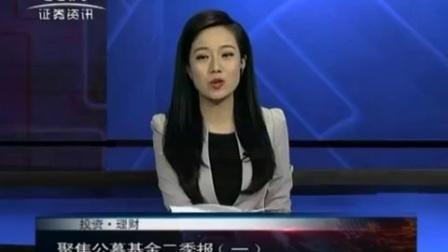 投资理财 2017 孙庭阳基金观察:聚焦公募基金二季报(一) 170731