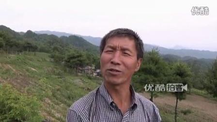 【拍客】铁路退休职工隐居大山 建庄园过世外桃源生活