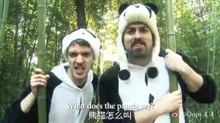 爆红神曲狐狸叫中国版 英国老外搞笑翻拍熊猫叫