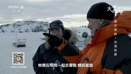 海洋探秘 冰海怪兽