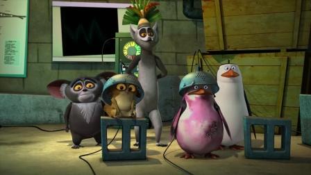 马达加斯加的企鹅 第三季 缺乏信心的菜鸟