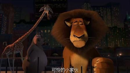 《马达加斯加 粤语版》  斑马探寻新世界 悄悄出走急坏好友