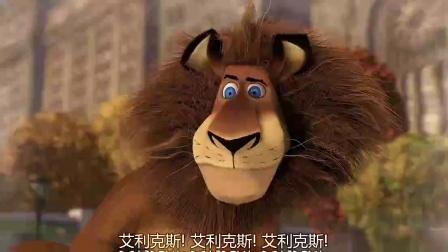 《马达加斯加 粤语版》  斑马遭怪兽围追 狮子挺身而出解围