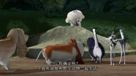 丛林大反攻2 丛林遇险心有余悸 怒追野生毛绒兔