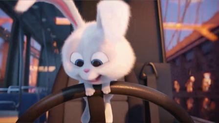 《爱宠大机密 普通话版》  小白兔驾车狂飙 激萌宠物大桥乱斗