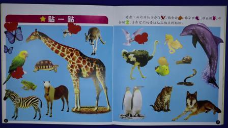 爱乐家园 亲子游戏 动物世界贴画 儿童智力玩具视频