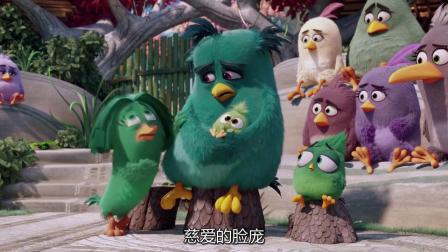 愤怒的小鸟: 胖红压碎鸟蛋当了野生爸爸, 还当众把法官的毛衣扒了