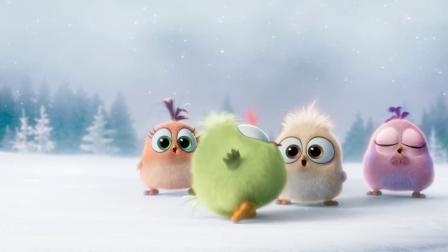 《愤怒的小鸟》其它预告片2:小鸟宝宝们的圣诞祝福 (中文字幕)