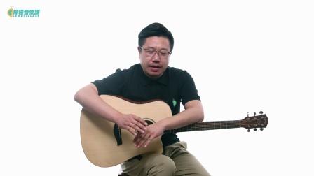 【柠檬音乐课】吉他弹唱教学《后来的我们》