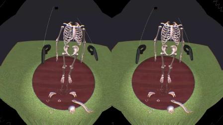 VR 翻转我的教室 虚拟现实生物课 ~ 人骨拼图