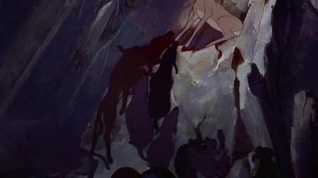 《小鹿斑比》  女友被劲敌 小鹿勇敢御敌受伤