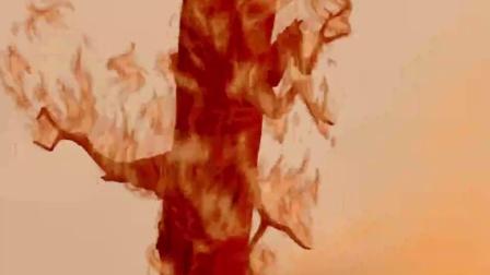 《小鹿斑比》  冒险穿越火海寻出路 父子果敢跳河