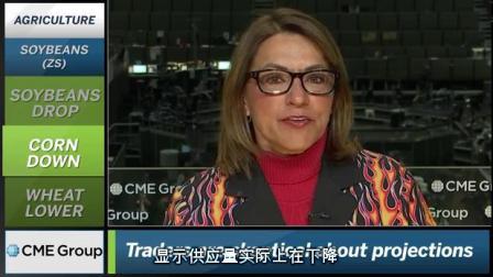 芝商所市场评论- 财经视频 2018 年5 月11