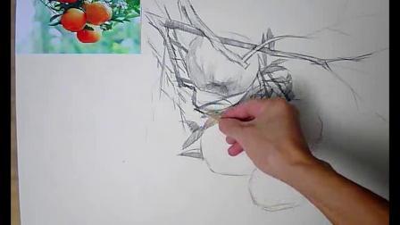 素描图片大全简单漂亮桔子画法步骤素描基础教程