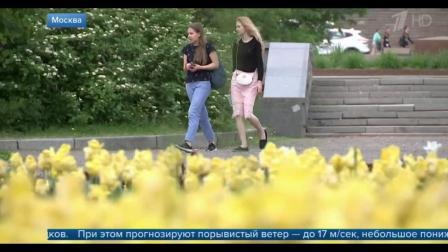 在俄罗斯中部的暴雨在周末光顾