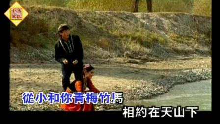刀郎 艾里甫和赛乃姆原版超高清MV网络红歌影视金曲《岳氏中医堂音乐与养生》推荐