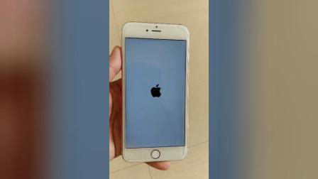 苹果6SP白苹果标志