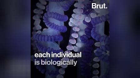 蓝僧帽水母 不是水母 而是很多水虫合体 合作如1身体