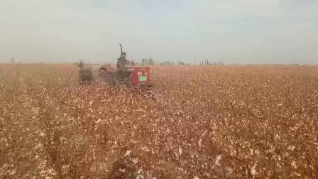 博尔塔拉蒙古自治州飒博尔农业科技有限公司田间作业视频