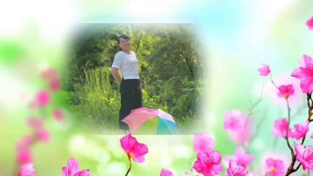 蓝春莲广场舞《等爱的玫瑰》