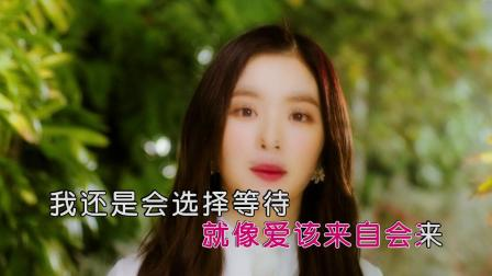 吴静祎 - 花海(HD)