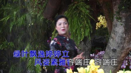 朱友娇 - 兰花赞(原版HD1080P)