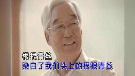于洋-退休干部之歌 红日蓝月KTV推介