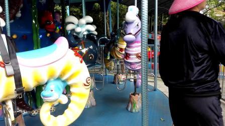 动物园游乐场