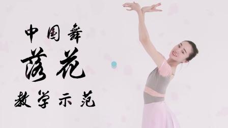 舞林一分钟中国舞《落花》教学-完整示范 米拉