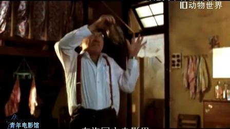 青年电影馆03:许冠文十种喜剧境界