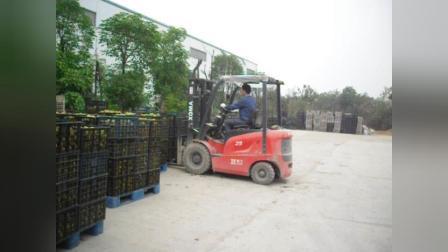 永新昌厦工2.5吨电动叉车客户案例-水果批发市场装卸现场