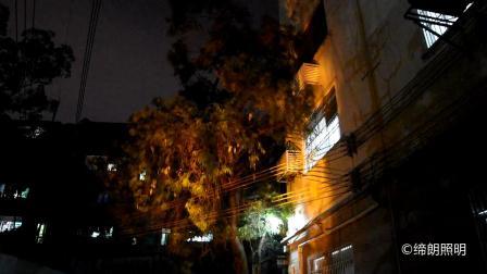 广州朗文光电  火舞灯 缔朗照明 模拟火的效果