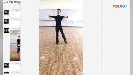 王枫逸、邹晓敏微课第一讲:基本姿势与移动_20180420_高清