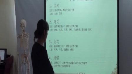 中医经络--手少阳三焦经视频教程