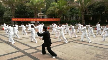 海南定安杨式传统28式