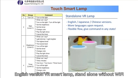 Touch Smart Lamp