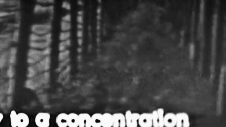 观看纳粹影片资料 艾希曼面不改色 竖版