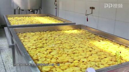 《寻味中国》安徽砀山黄桃:强迫症福利!黄桃罐头生产线大揭秘